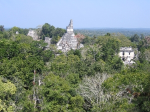 The Maya ruins at Tikal National Park in Guatemala. (Wikimedia Commons photo by Peter Anderson)